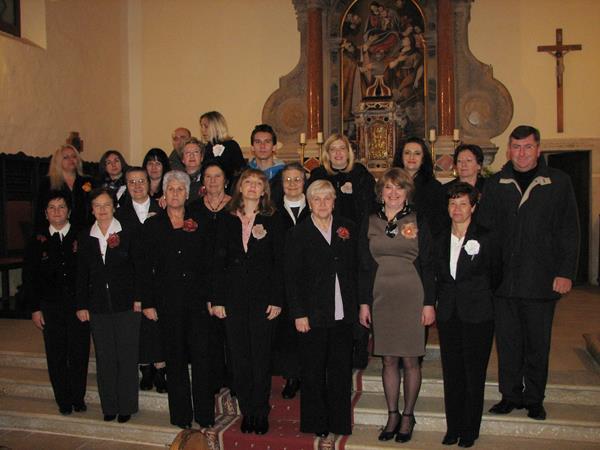Vrsarski zbor